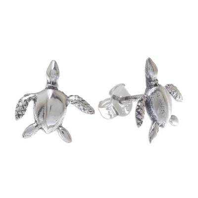Sterling Silver Sea Turtle Stud Earrings from Thailand