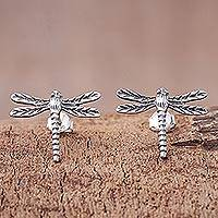 Sterling silver button earrings, 'Dragonfly Buzz' - Sterling Silver Dragonfly Button Earrings from Thailand