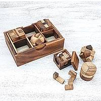 Wood puzzle set, 'Beautiful Challenge' (6 piece)