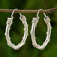 Sterling silver hoop earrings, 'Nautical Hoops'