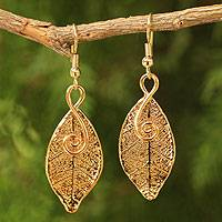 Natural leaf gold-plated earrings, 'Forest Duet'